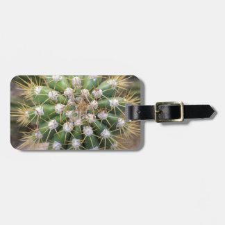 Étiquette À Bagage Dessus de cactus