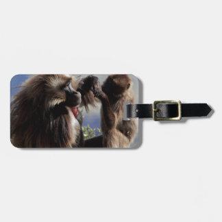 Étiquette À Bagage Deux babouins de gelada (gelada de Theropithecus)