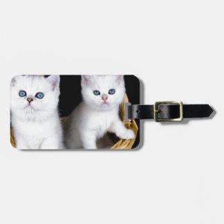 Étiquette À Bagage Deux chatons blancs dans le panier sur