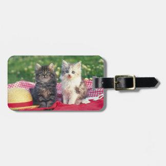 Étiquette À Bagage Deux chatons se reposant sur une couverture
