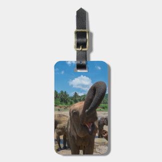 Étiquette À Bagage Eau potable d'éléphant, Sri Lanka