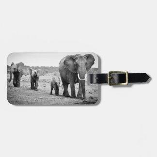 Étiquette À Bagage Éléphant africain et veaux | Kenya, Afrique
