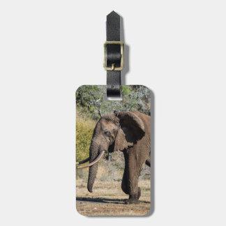 Étiquette À Bagage Éléphant avec de longues défenses
