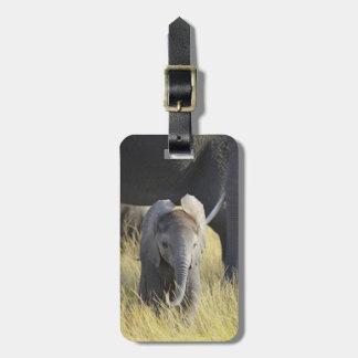 Étiquette À Bagage Éléphant de bébé
