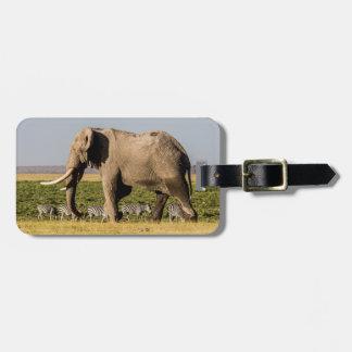 Étiquette À Bagage Éléphant et zèbres au point d'eau