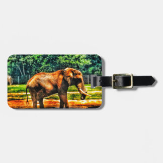 Étiquette À Bagage éléphant fullsizeoutput_1104