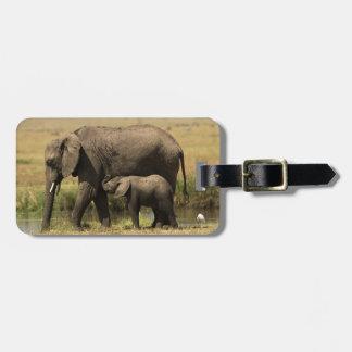 Étiquette À Bagage Éléphants africains