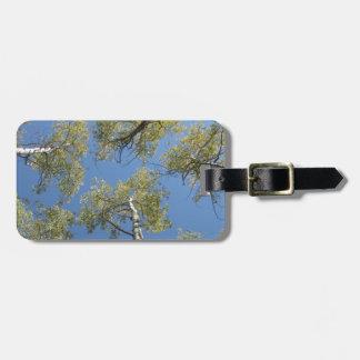 Étiquette À Bagage Étiquette de bagage, conception d'arbre d'Aspen