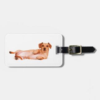Étiquette À Bagage Étiquette de bagage de chien de teckel