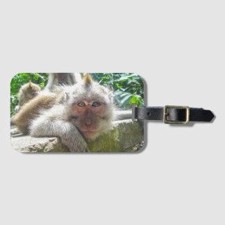 Étiquette À Bagage Étiquette de bagage de singe