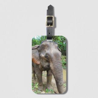 Étiquette À Bagage Étiquette de bagage d'éléphant asiatique