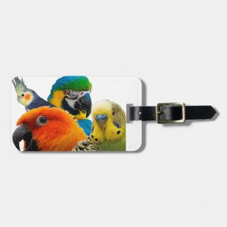Étiquette À Bagage Étiquette de bagage des perroquets IV avec le