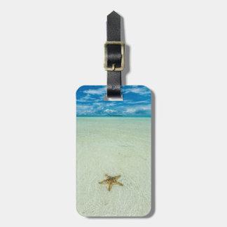 Étiquette À Bagage Étoile de mer en eau peu profonde, Palaos