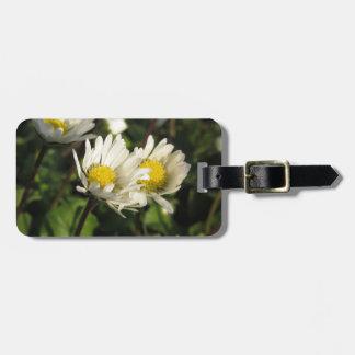 Étiquette À Bagage Fleurs de marguerite blanche sur l'arrière - plan