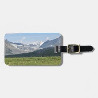 Étiquette À Bagage Glacier