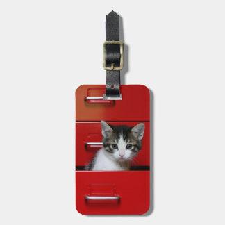 Étiquette À Bagage Jeter un coup d'oeil de chaton