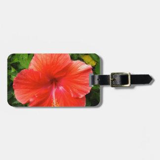 Étiquette À Bagage Ketmie rouge tropicale Bonita Springs la Floride