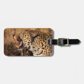 Étiquette À Bagage Le léopard de baîllement montre des dents