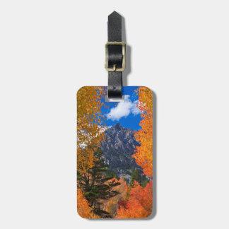 Étiquette À Bagage Montagne encadrée dans le feuillage d'automne, CA