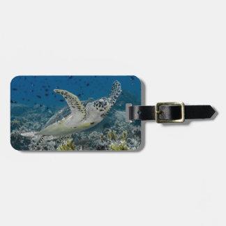 Étiquette À Bagage Natation de tortue de mer de Hawksbill