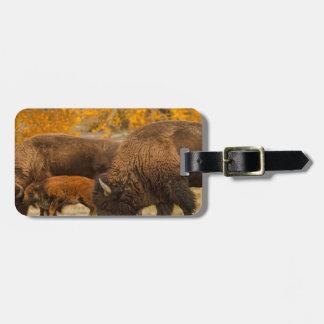 Étiquette À Bagage Nation de famille de bison