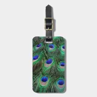 Étiquette À Bagage Oeil-taches sur la plume masculine de paon