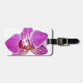 Étiquette À Bagage Peinture florale d'aquarelle de phalaenopsis lilas