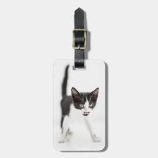 Étiquette À Bagage Petit chat