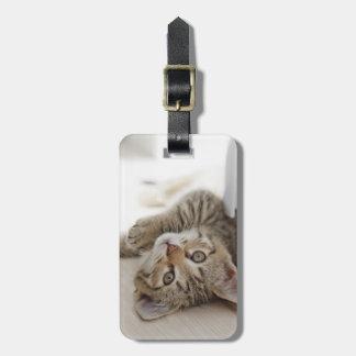 Étiquette À Bagage Petit chaton mignon
