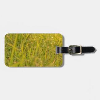 Étiquette À Bagage Photo de détail d'herbe