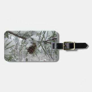 Étiquette À Bagage Photographie de nature d'hiver de branche de pin