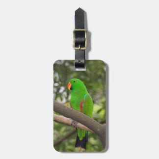 Étiquette À Bagage Portrait vert de perroquet
