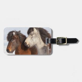 Étiquette À Bagage Profil islandais de cheval, Islande