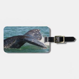 Étiquette À Bagage Queue de baleine grise