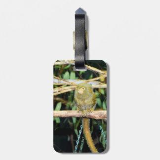 Étiquette À Bagage Singe d'ouistiti se reposant sur une branche,