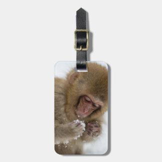 Étiquette À Bagage Singe japonais de neige du Macaque | de bébé