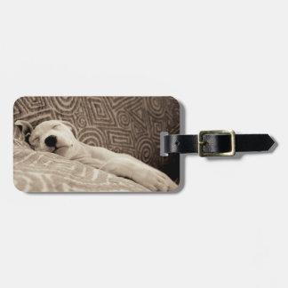 Étiquette À Bagage Un chien fatigué