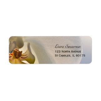 Étiquette Adresse de retour d'élégance blanche d'orchidée