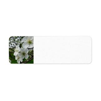 Étiquette Apple fleurissent l'étiquette de adresse de retour