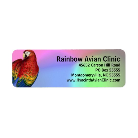 Étiquette Ara d'arc-en-ciel avec l'arrière - plan coloré