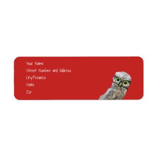 Étiquette Art creusant bleu lunatique et adorable de hibou