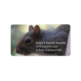 Étiquette Autocollant d'adresse d'écureuil