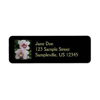 Étiquette Belles fleurs tropicales d'orchidées blanches