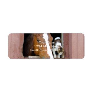 Étiquette Chat et cheval - ranch de cheval - amants de