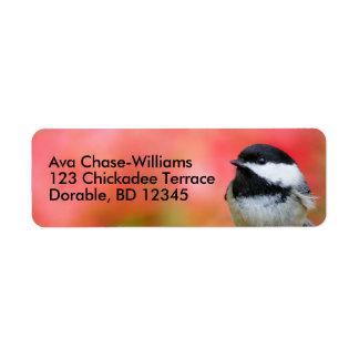 Étiquette Chickadee Noir-Couvert mignon sur le pommier