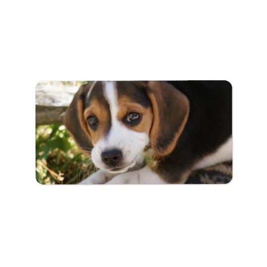 Étiquette Chien de bébé de beagle