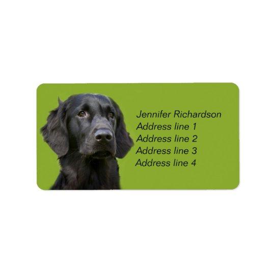 Étiquette Chien enduit plat de chien d'arrêt, coutume noire