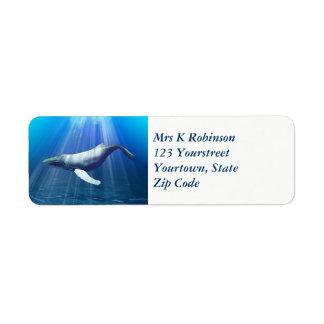 Étiquette Couleur pour aquarelle de baleine de bosse