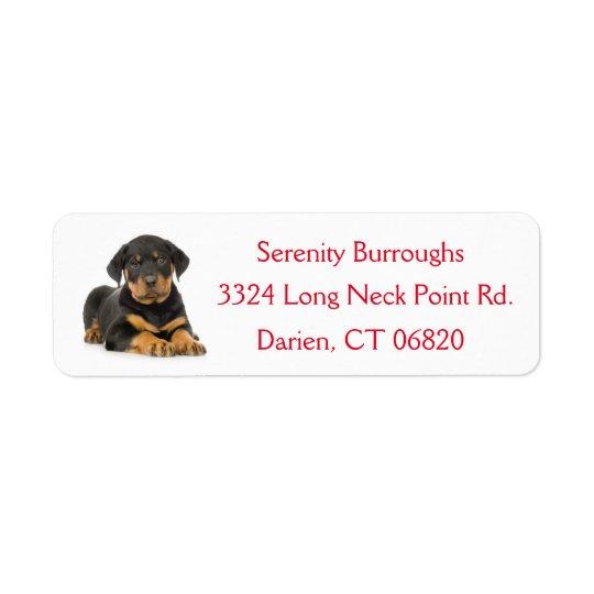 Étiquette de adresse canin rouge de chiot de