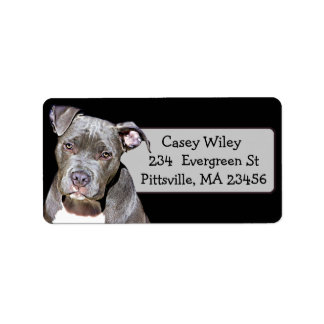 Étiquette de adresse de chien de Pitbull d'animal